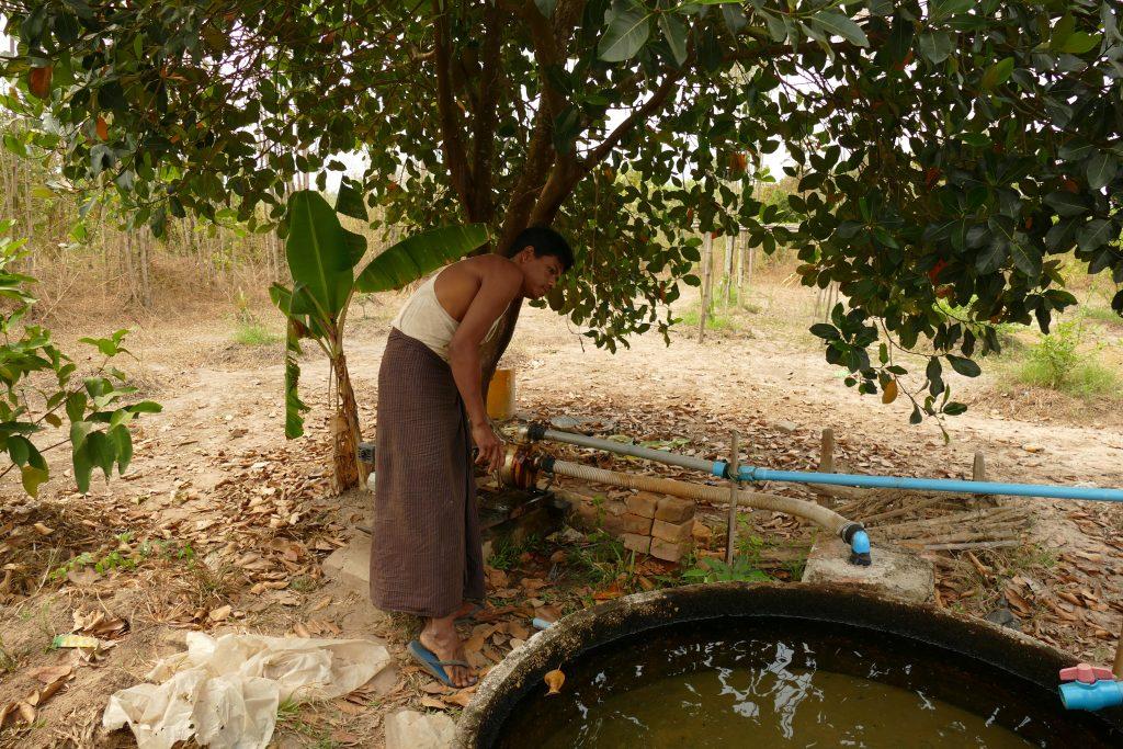 ミャンマーの水